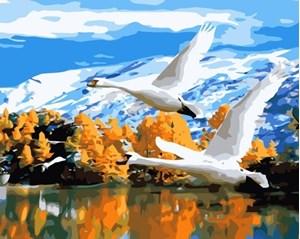 Изображение Гуси над озером