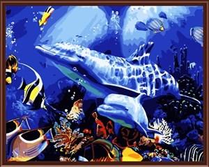 Изображение Дельфины