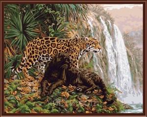 Изображение Гепарды