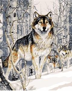 Изображение Волк зимой.