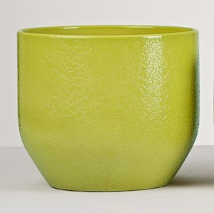 Изображение Кашпо  820Lezard Vert D16см, керамика