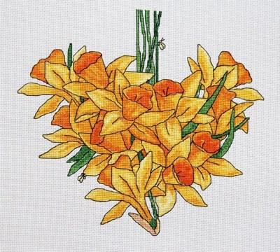 Изображение Нарциссы сердце. Апрель