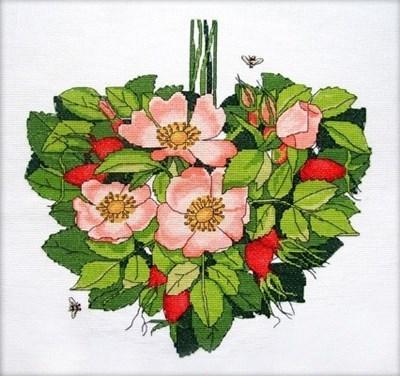 Изображение Шиповник сердце. Август