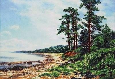 Изображение Сосны на морском берегу