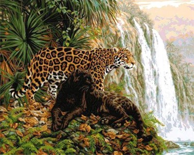 Изображение Леопард (El Dorado)