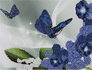 Изображение Бабочки и цветы