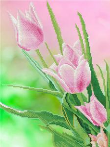 Изображение Тюльпаны