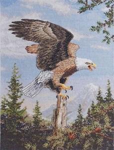 Изображение Крик орла (Screaming Eagle)