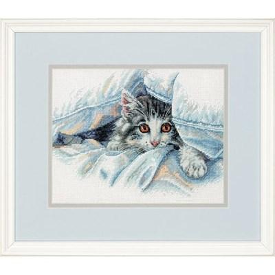 Изображение Кошачий комфорт (Cat Comfort)
