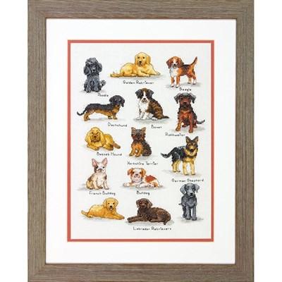 Изображение Породы собак (Dog Sampler)