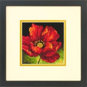 Изображение Красный мак (Red Poppy)