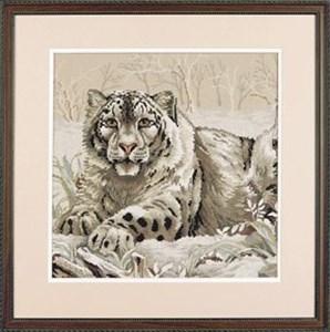 Изображение Снежный леопард (The Snow Leopard)