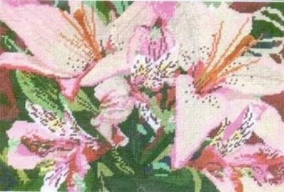 Изображение Азиатские лилии (Asiatic lilies)