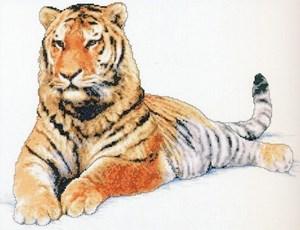 Изображение Амурский тигр (Manchurian Tiger)