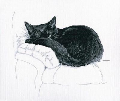 Изображение Среди черных котов