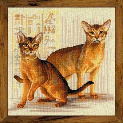 Изображение Абиссинские кошки