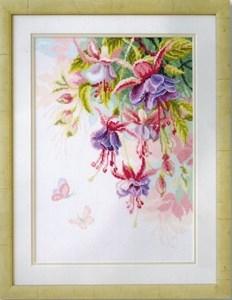 Изображение Фуксия (Fuchsia)