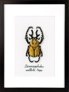 Изображение Золотой жук (Golden Beetle)