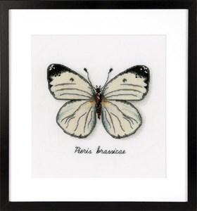 Изображение Белая бабочка (White Butterfly)