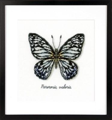 Изображение Голубая бабочка (Blue Butterfly)