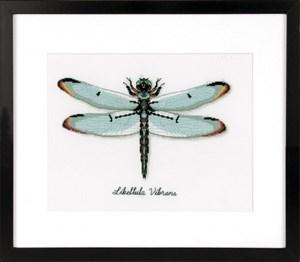 Изображение Стрекоза (Dragonfly)