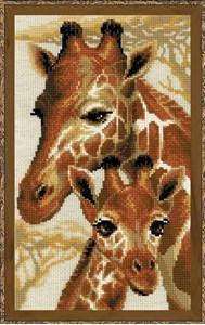 Изображение Жирафы