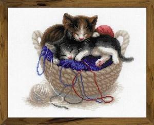 Изображение Котята в корзине