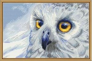 Изображение Полярная сова