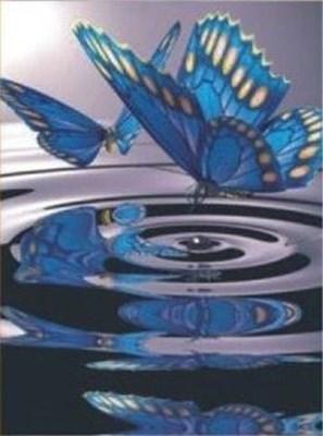 Изображение Бабочки на воде