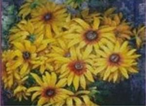 Изображение Жёлтые ромашки