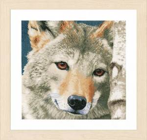 Изображение Волк (Wolf)