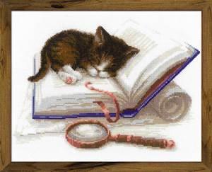 Изображение Котёнок на книжке