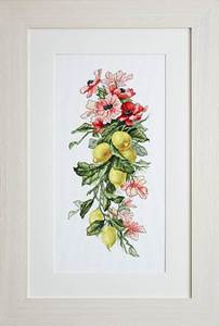 Изображение Цветы и лимоны