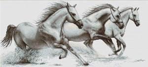 Изображение Белые лошади