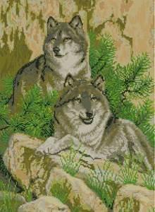 Изображение Пара волков