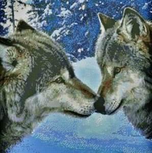 Изображение Волчий поцелуй