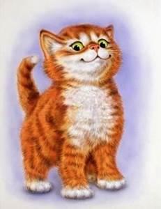 Изображение Важный кот
