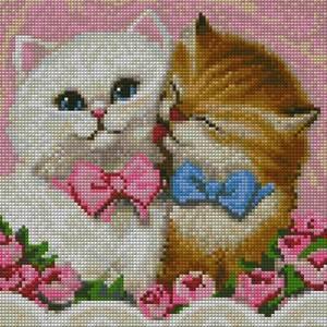 Изображение Кот и кошка