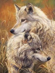 Изображение Волчья нежность