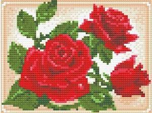 Изображение Молодая роза