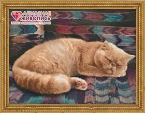 Изображение Персидский кот