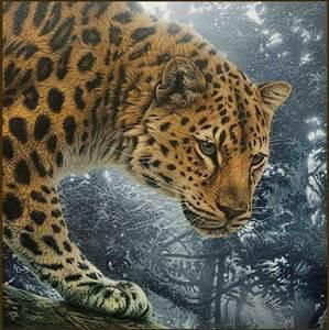 Изображение Охотник Джунглей
