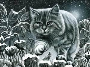 Изображение Кот на заборе