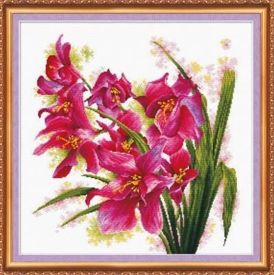 Изображение Лиловые орхидеи