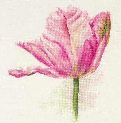Изображение Тюльпаны. Нежно-розовый