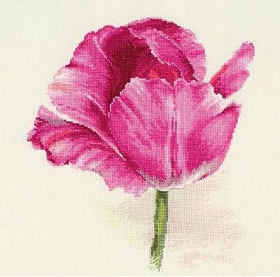 Изображение Тюльпаны. Малиновое сияние