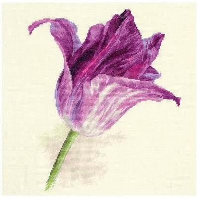 Изображение Тюльпаны. Сиреневый бархат