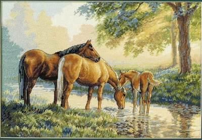 Изображение Лошади у воды
