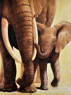 Изображение Слонёнок с мамой
