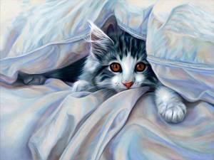 Изображение Кот под одеялом